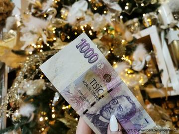 Češi jsou při nakupování vánočních dárků v zahraničních e-shopech opatrnější než v těch českých. O měnový kurz se ale spíše nezajímají