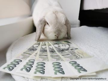 Nejvýnosnější spořící účty ovládla Moneta. Inflace vám přesto sežere dvojnásobek